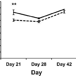(a–c) Schematic of the study. BUN = blood urea nitrogen