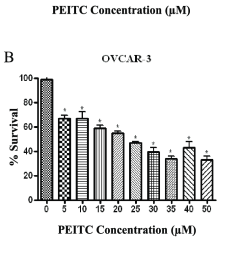 peitc is cytotoxic to human ovarian cancer cells effect of varying download scientific diagram [ 735 x 1785 Pixel ]