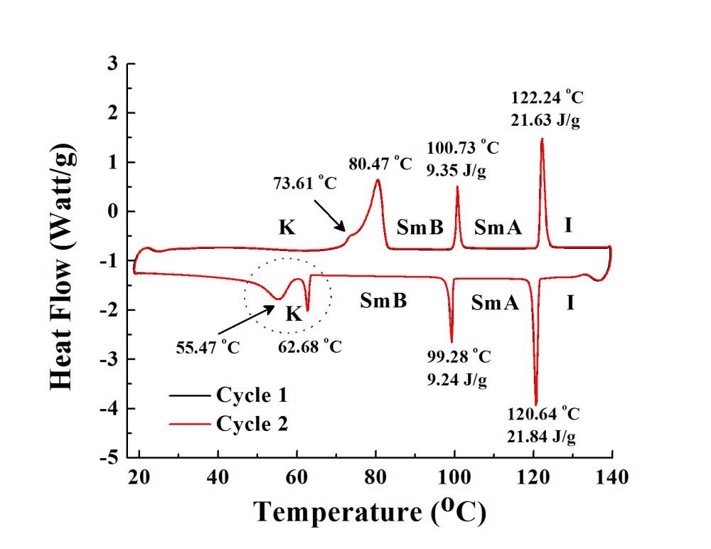 medium resolution of dsc 2cycles jpg517 08 kb phase behavior