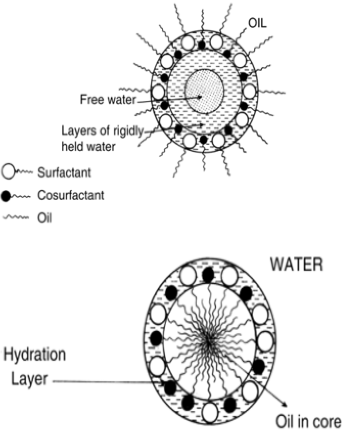(A).The structural aspects of stable water in oil emulsion