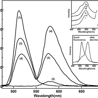 (PDF) Formation of fluorescent H-aggregates of a cyanine