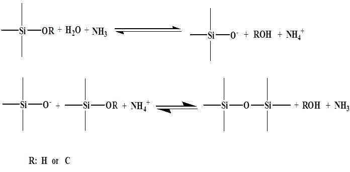 hydrolysis and condensation of TEOS in the Stober method