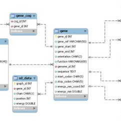 Data Model Entity Relationship Diagram 2 Switches One Light Wiring Entity-relationship Of The Mysql Database. Schema Data... | Download Scientific