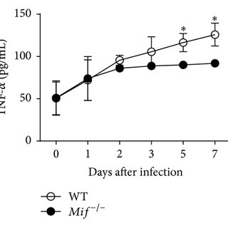 MIF promotes classical activation (M1) of inflammatory