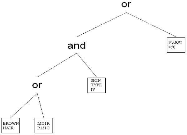 Example of a logic tree representing the Boolean