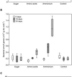 abundance of ammonia oxidizing archaea aoa and ammonia oxidizing download scientific diagram [ 850 x 2171 Pixel ]