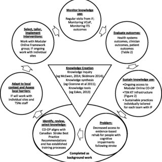 (PDF) A multi-faceted knowledge translation approach to