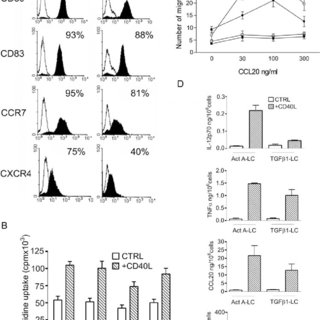 (PDF) Activin A Induces Langerhans Cell Differentiation In