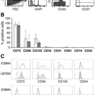 (PDF) High abundance of CD271+ multipotential stromal