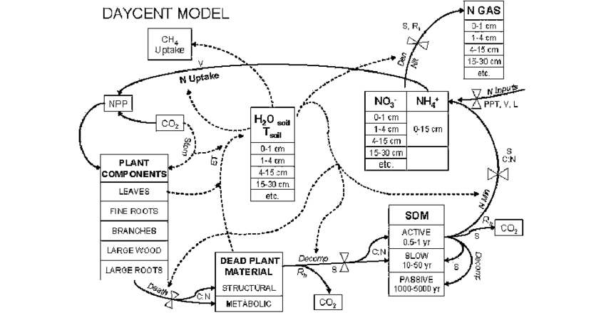 Diagram for the DAYCENT ecosystem model showing C and N