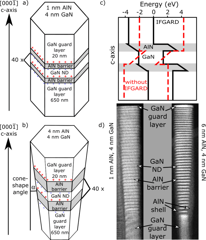 Schematic sketch of nanowires (NWs) with embedded IFGARD