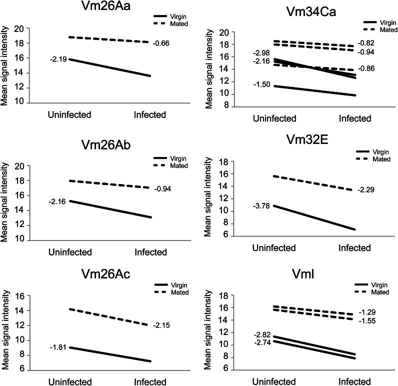 Vitelline membrane transcript abundances decrease after