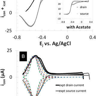 Structure of complex II and its prosthetic groups (A
