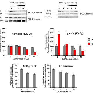 Regulation of the HIF pathway by oxygen dependant and