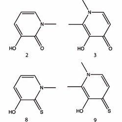 Relative binding affinity (ΔΔGXP = docking score (Glide XP