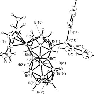 (PDF) Macropolyhedral boron-containing cluster chemistry