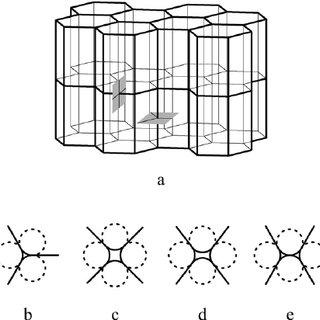 (PDF) Membrane elasticity molds aggregates of simple cells