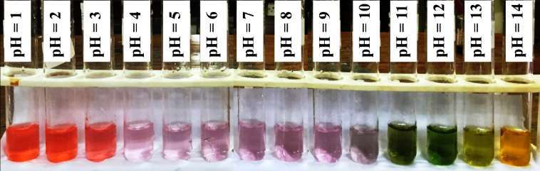 The shoe-flower (Hibiscus rosa-sinensis) extract as an indicator at different pH