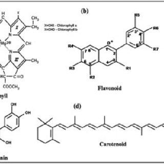 Chemical structures of Ru complexes (a) N3 dye, (b) N719