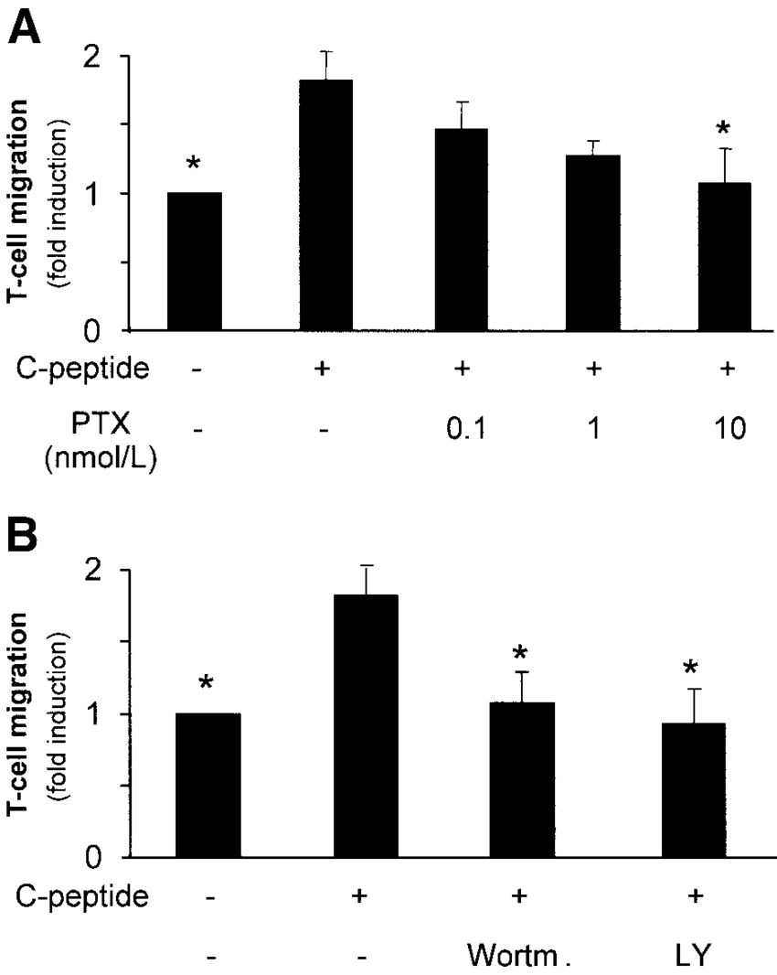 hight resolution of c peptide induced cd4 cell migration involves pertussis toxin sensitive g proteins as well as pi 3 k a freshly isolated human cd4 cells were incubated