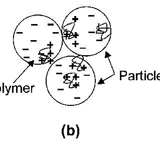 The molecular structures of the synthetic flocculants (a