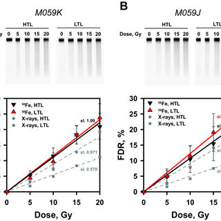 DSB repair kinetics of human M059K cells exposed to 58Fe