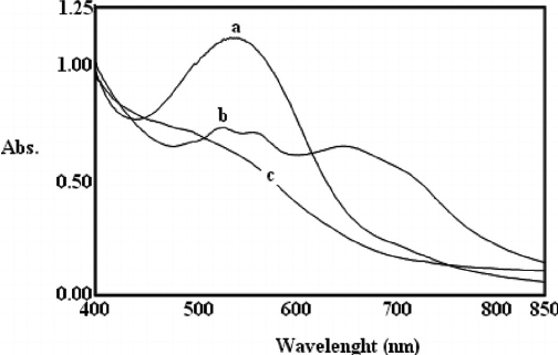 UV-vis spectra taken after completed polymerization