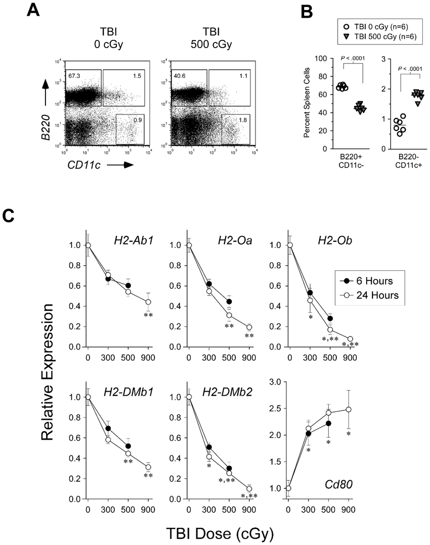 hight resolution of flow cytometry and real time pcr analyses a representative facs plot and