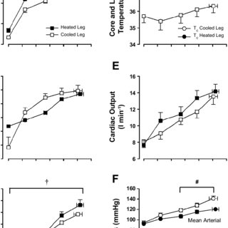(PDF) Local temperature-sensitive mechanisms are important