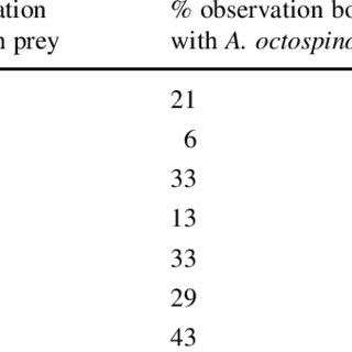 (PDF) How much do army ants eat? On the prey intake of a