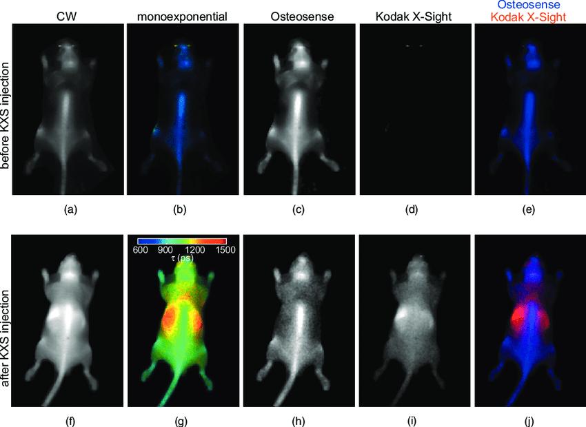 planar fluorescence lifetime imaging