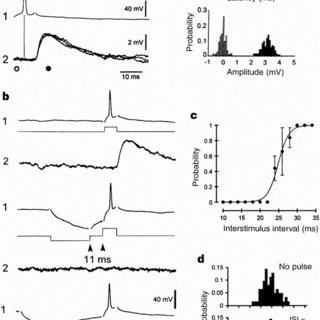 (PDF) Action-potential propagation gated by an IA-like K+