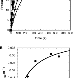 concentration dependence on the pre steady state rate constant of dctp incorporation a preincubated solution of dpo4 120 nm and 5 32p labeled  [ 669 x 1280 Pixel ]