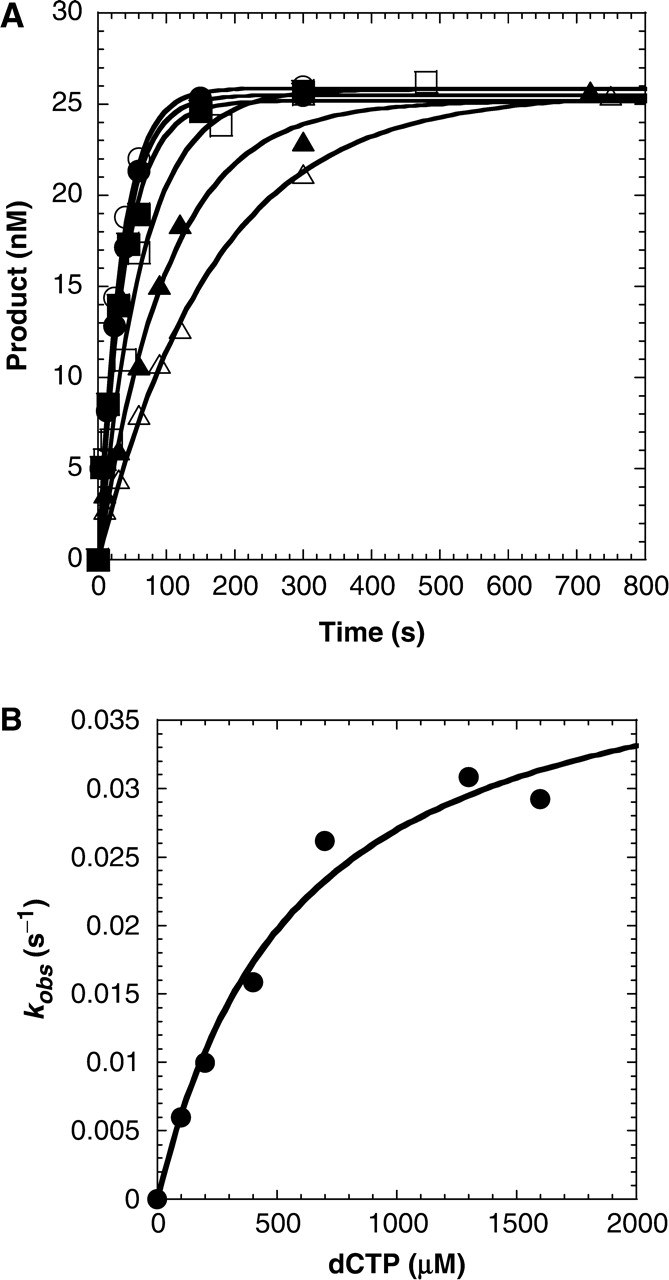 hight resolution of concentration dependence on the pre steady state rate constant of dctp incorporation a preincubated solution of dpo4 120 nm and 5 32p labeled