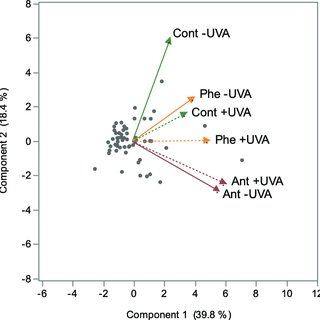 (PDF) Phototoxic effects of PAH and UVA exposure on