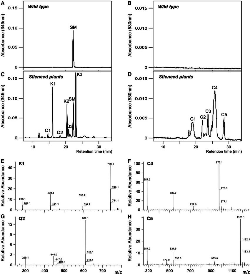 HPLC and Liquid Chromatography–Mass Spectrometry Analysis