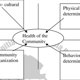 (PDF) Introduction to Public Health