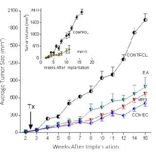 P2Y1 Receptor blockade or NM23 antagonist significantly