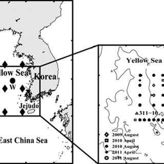 (PDF) The temporal and spatial variability of the Yellow