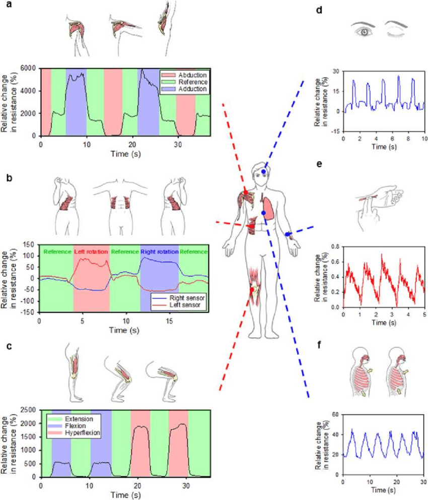 hight resolution of whole body motion monitoring system six basic joint level movements
