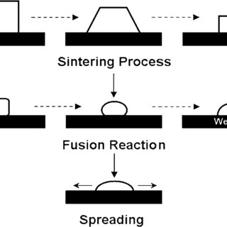(PDF) Electrical Properties of Screen Printed Silicon
