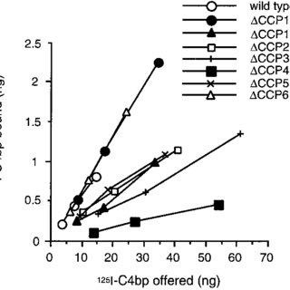 Binding of 125 I-C4bp to ovarian tumor cell lines. Cells