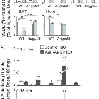 (PDF) Hepatic ANGPTL3 regulates adipose tissue energy