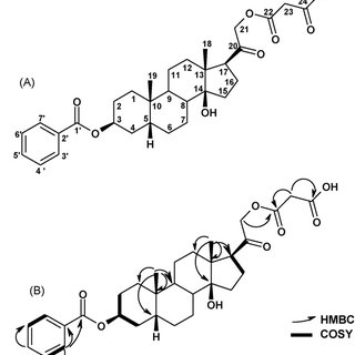 (PDF) Synthesis of a putative substrate for malonyl
