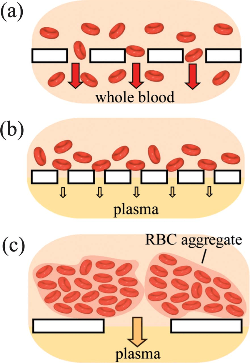 medium resolution of schematic illustration of the use of red blood cell rbc agglutination to improve efficiency