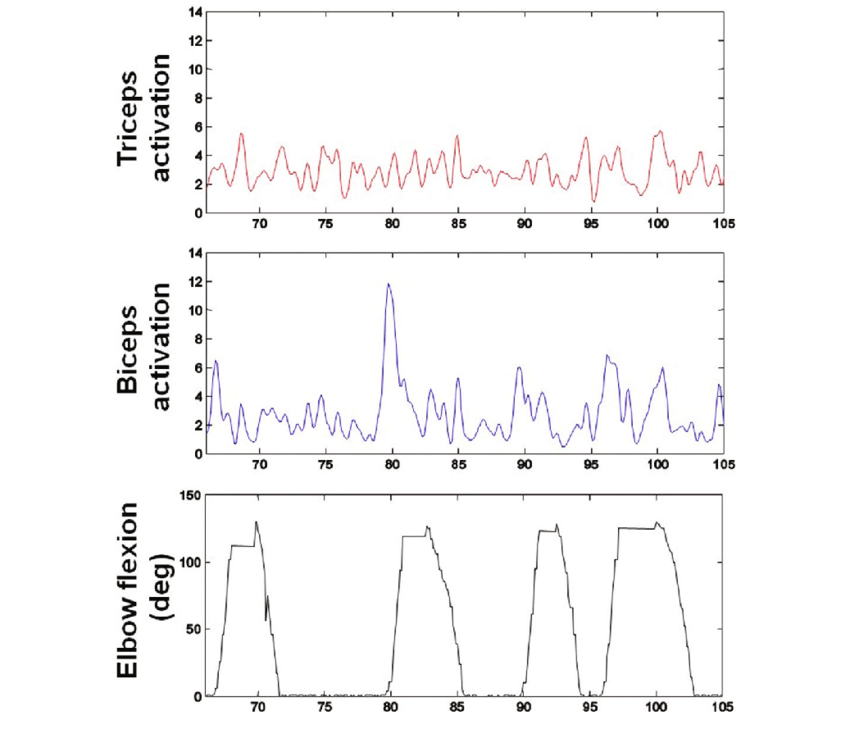 Data sample for biceps and triceps EMG activation, and arm