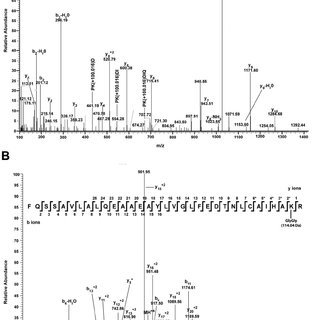 Mass spectrometry analysis of PTM for a T. gondii