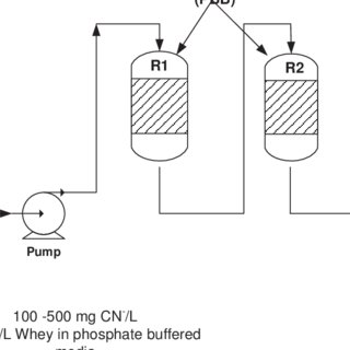 (PDF) Biodegradation of free cyanide and subsequent