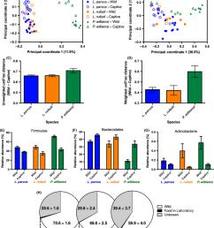 effects of captivity on the lizard gut microbiota a principal download scientific diagram [ 850 x 1033 Pixel ]