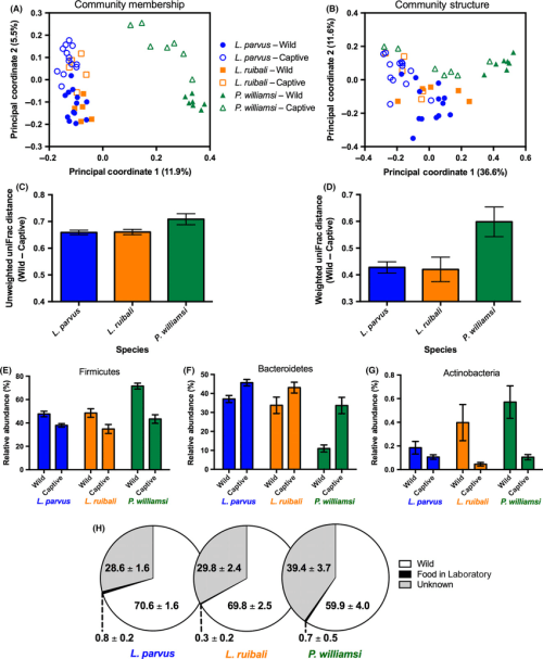 small resolution of effects of captivity on the lizard gut microbiota a principal download scientific diagram